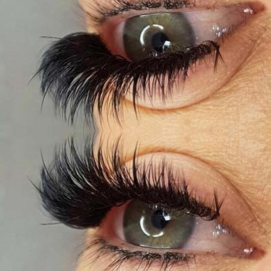 lashdolls beauty lashes